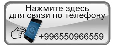 Elev8 в Бишкеке