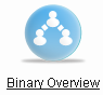 Страница binary overview в личном кабинете bepic