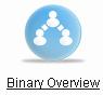 Страница binary overview в личном кабинете bepic