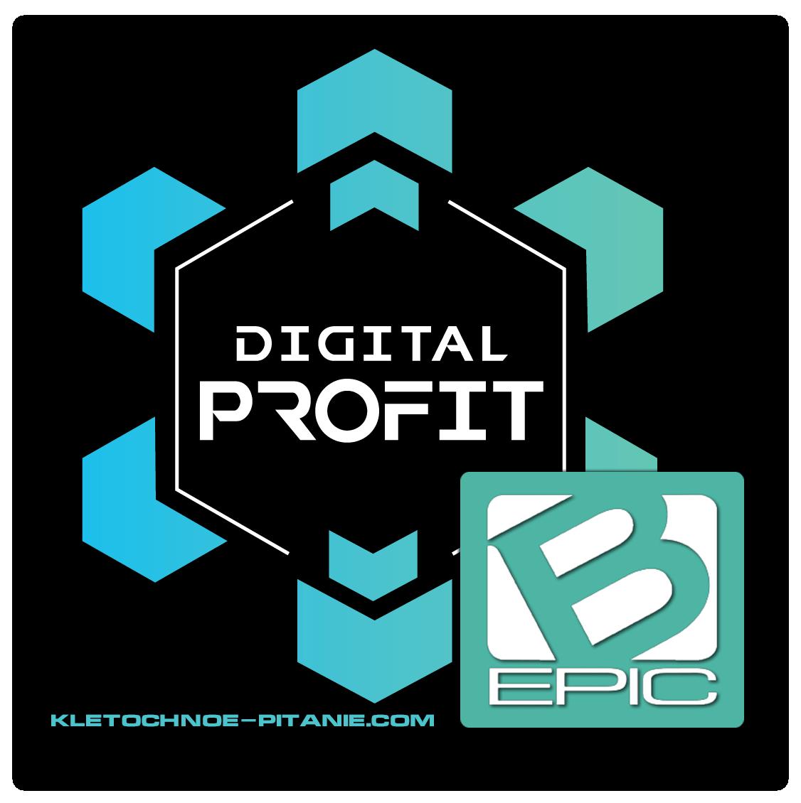 Digital Profit - финансовая платформа для партнёров BEpic