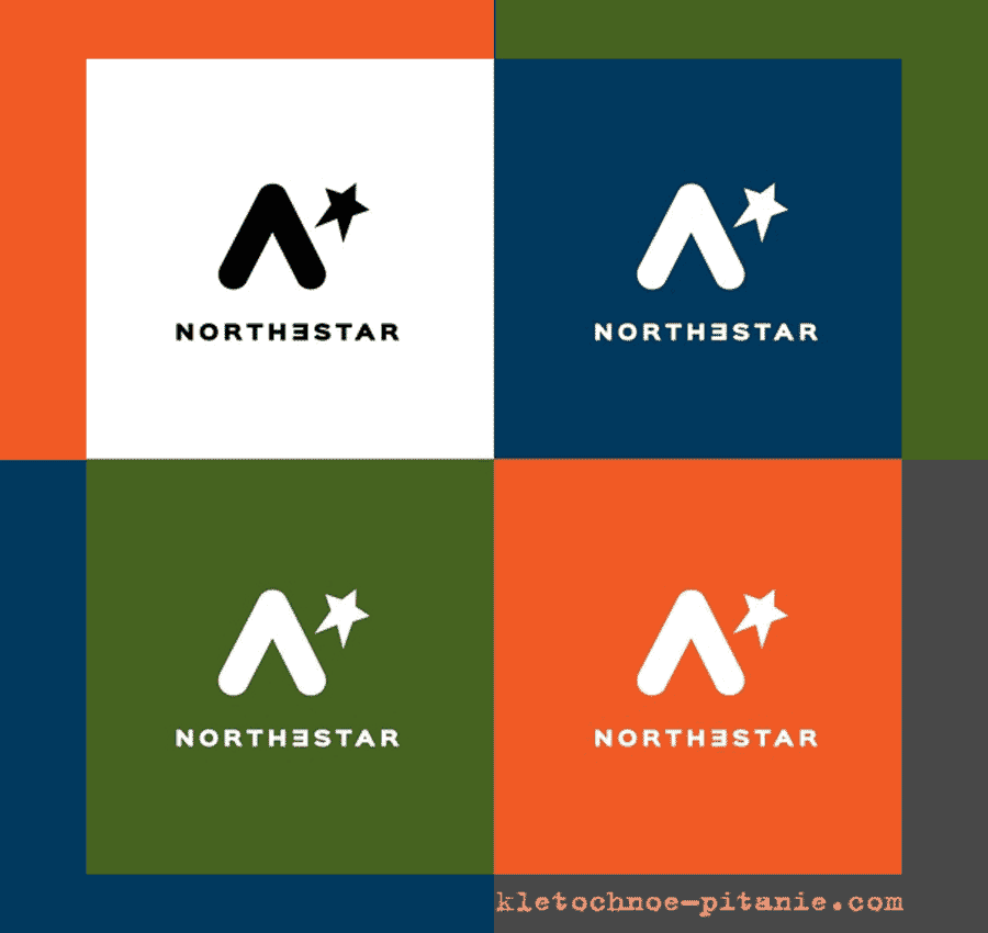 Логотип компании Northestar (США)